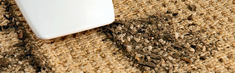 AllClean Carpet Care is located in Topsham and Brunswick Maine
